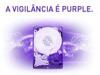 A vigilância é Purple